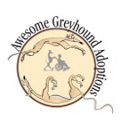 6564323-0-awesomegreyhhounds