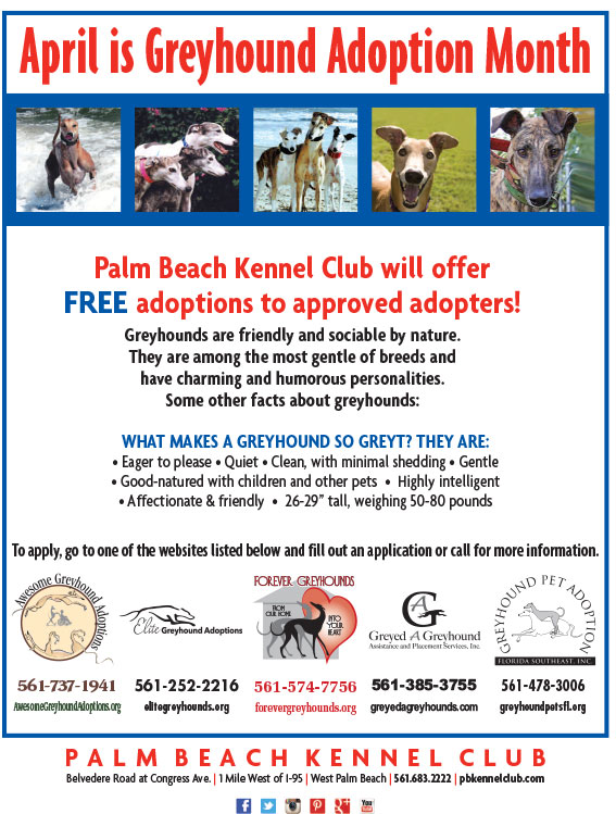 GreyhoundAdoptionMonth2017-Flyer[1]